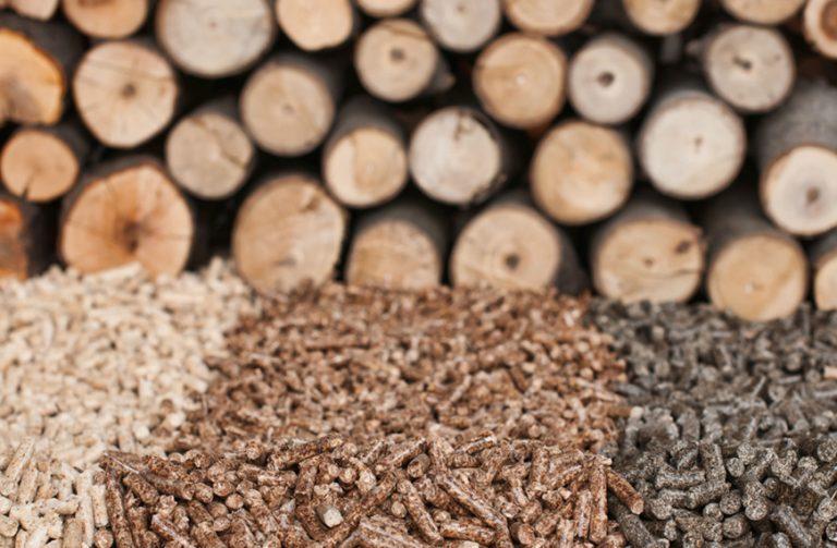 Biomasse legnose: nel Bacino Padano sale il pellet, scende la legna