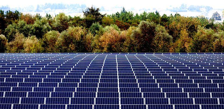 Fotovoltaico, Renergetica vende a Trina Solar autorizzazioni per impianto in Cile