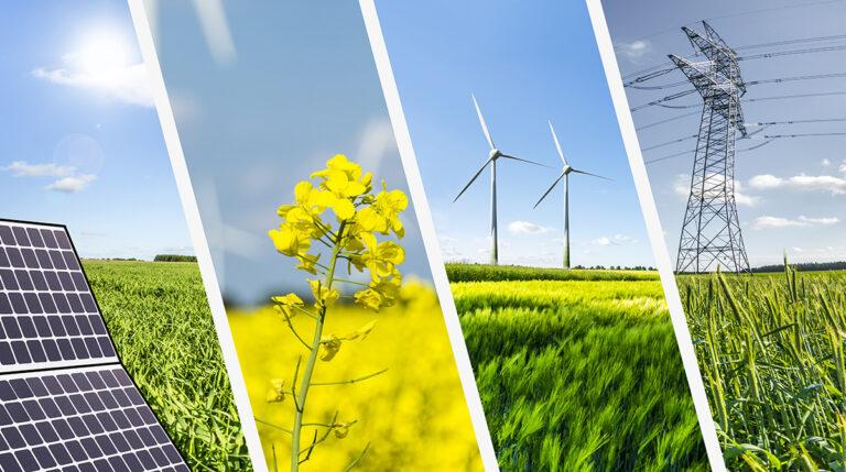 Rinnovabili (primo semestre 2020): in Europa sorpasso sulle fonti fossili
