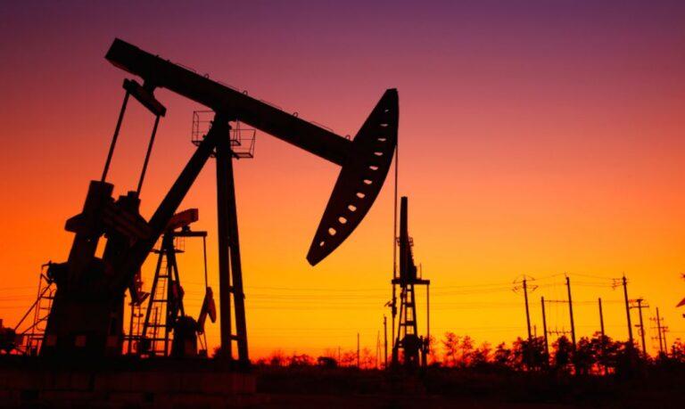OPEC, previsto calo del consumo di petrolio per i Paesi dell'OCSE