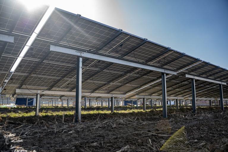 AEROCOMPACT, nuovi sistemi di palificazione per parchi solari di medie dimensioni