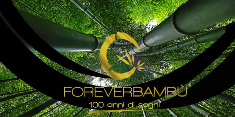 Forever Bambù, progetto per abbattere le emissioni di CO2 delle imprese