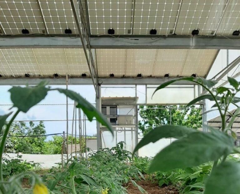 Agro-FV, BayWa re. e Fraunhofer ISE presentano sistema per produzione sostenibile di mele
